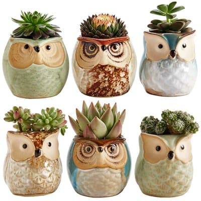 Sun-E 2.5 inches Fluid Icing Ceramic Owl Bowl